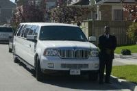 toronto chauffeur driver services